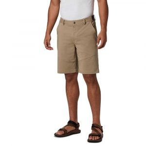 Columbia Mens Tech Trail Shorts-Tusk